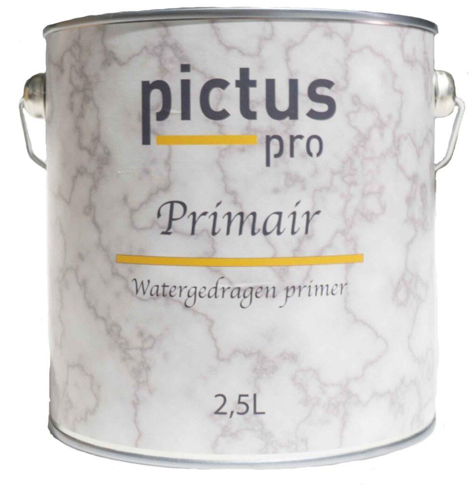 Pictus Primair